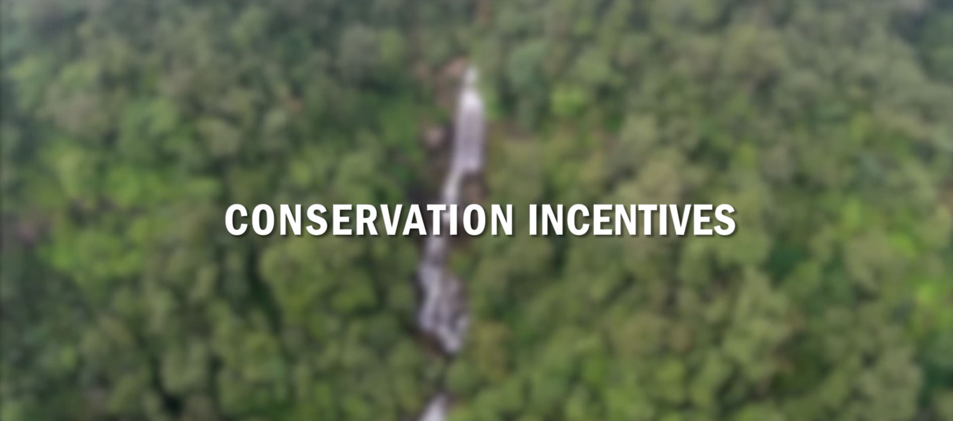 Conservation Incentives