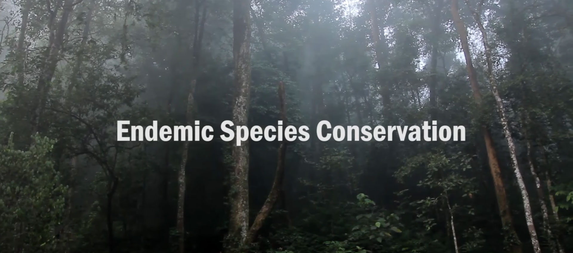 Endemic Species Conservation
